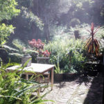 Apartment Garden - The Hout Bay Hideaway