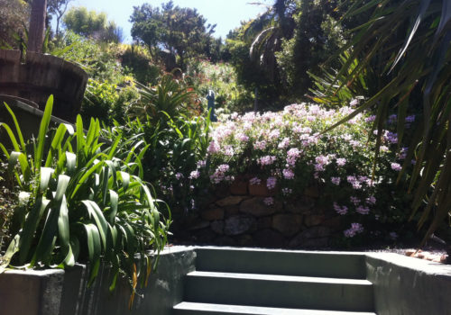 Garden - The Hout Bay Hideaway