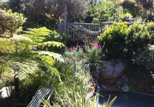 Garden and Pool - The Hout Bay Hideaway
